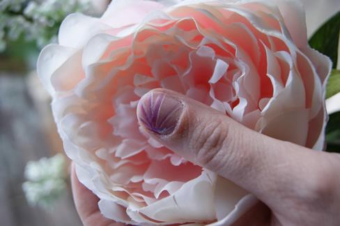 Nagellakpennen Roze Paars en Wit